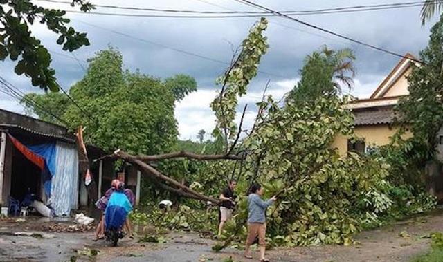 Giông lốc tàn phá hàng chục ngôi nhà, hàng trăm cây xanh - 3
