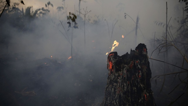 Những đám mây ô nhiễm khổng lồ chứa khí CO từ thảm họa cháy rừng Amazon - 2