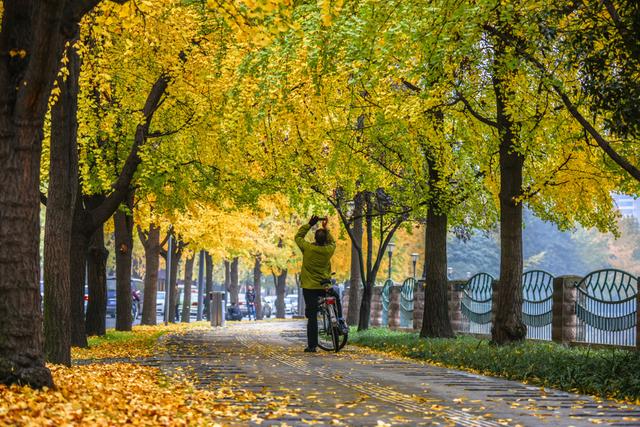 Những điểm hẹn lý tưởng cho người yêu mùa thu - 3