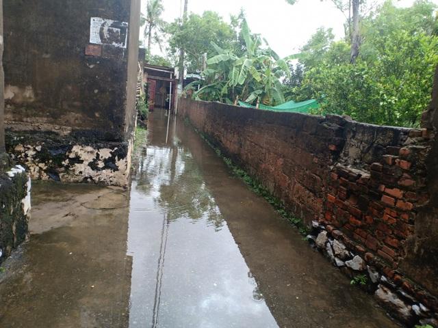 Dân thành phố khốn khổ vì... lội nước ngập - 1