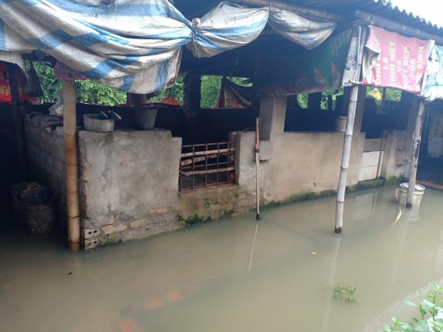 Dân thành phố khốn khổ vì... lội nước ngập - 6