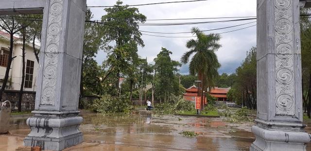 Giông lốc tàn phá hàng chục ngôi nhà, hàng trăm cây xanh - 11