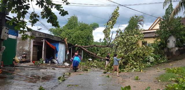 Giông lốc tàn phá hàng chục ngôi nhà, hàng trăm cây xanh - 7