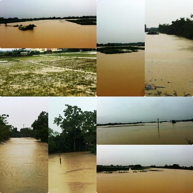 Nước sông lên báo động 2, hàng nghìn hộ dân bị cô lập - 1
