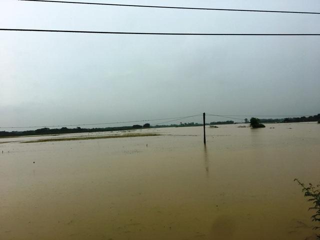 Nước sông lên báo động 2, hàng nghìn hộ dân bị cô lập - 8
