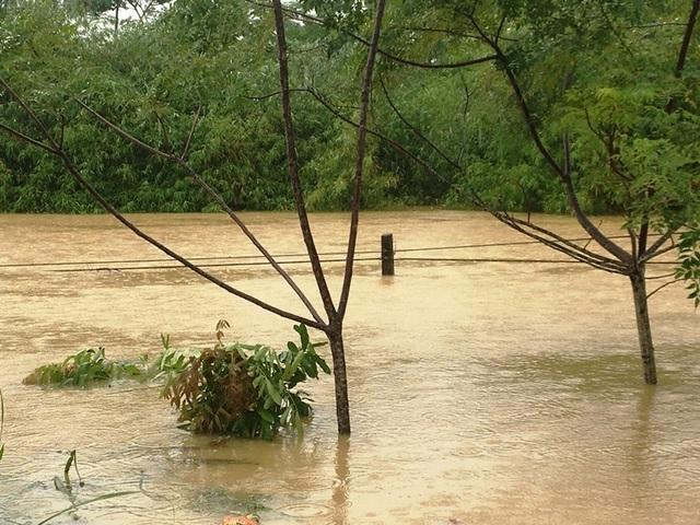 Nước sông lên báo động 2, hàng nghìn hộ dân bị cô lập - 2