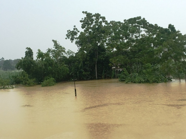 Nước sông lên báo động 2, hàng nghìn hộ dân bị cô lập - 5