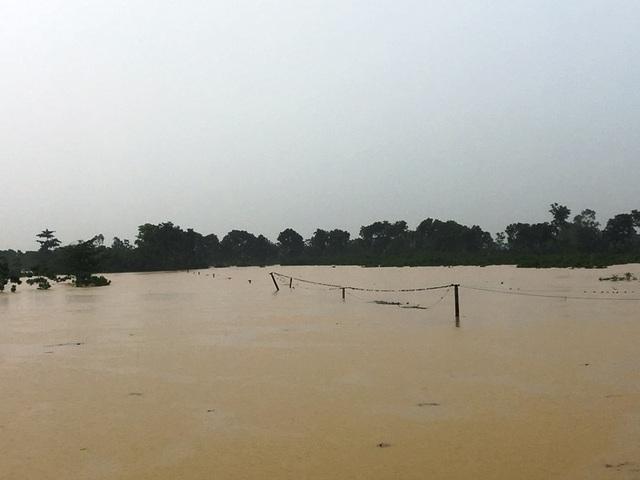 Nước sông lên báo động 2, hàng nghìn hộ dân bị cô lập - 7