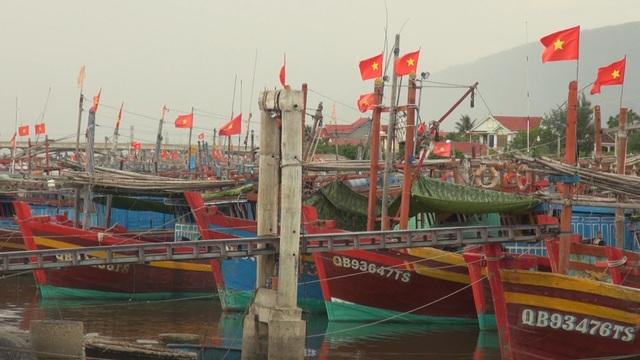 Ngư dân lo lắng vì vay tiền cải hoán tàu cá vẫn chưa chắc được ra khơi - 4
