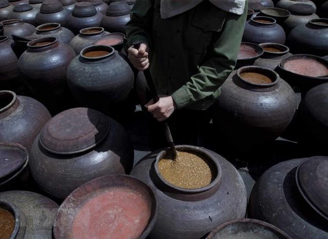 Những hình ảnh về nghề làm tương bần ở tỉnh Hưng Yên - 9