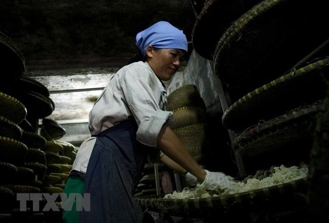 Những hình ảnh về nghề làm tương bần ở tỉnh Hưng Yên - 4