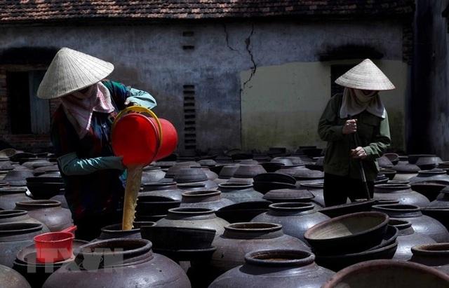 Những hình ảnh về nghề làm tương bần ở tỉnh Hưng Yên - 6