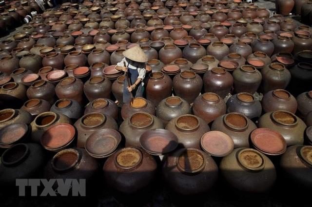 Những hình ảnh về nghề làm tương bần ở tỉnh Hưng Yên - 7