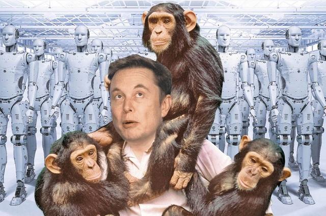 """Elon Musk: """"AI sẽ sớm khiến chúng ta trông giống như những con khỉ"""" - 1"""
