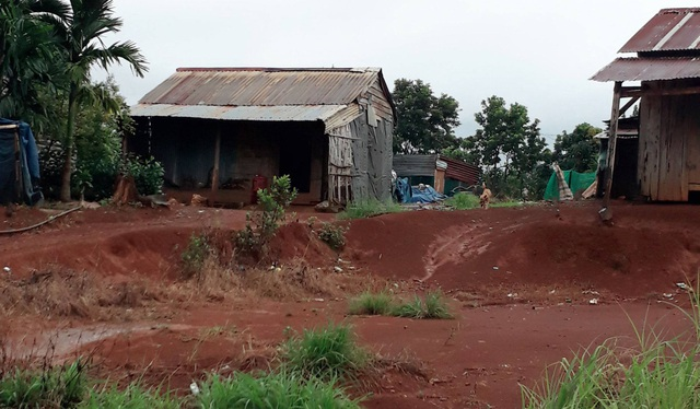Bị lấn mất quá nửa diện tích đất đi thuê, doanh nghiệp xin trả lại đất cho tỉnh - 1