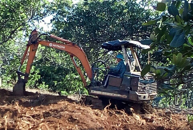 Bị lấn mất quá nửa diện tích đất đi thuê, doanh nghiệp xin trả lại đất cho tỉnh - 2