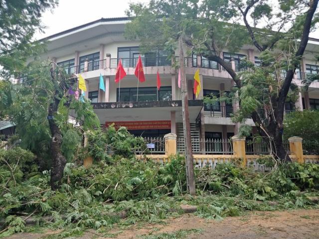 Cây xanh đổ la liệt tại Thừa Thiên Huế - 1