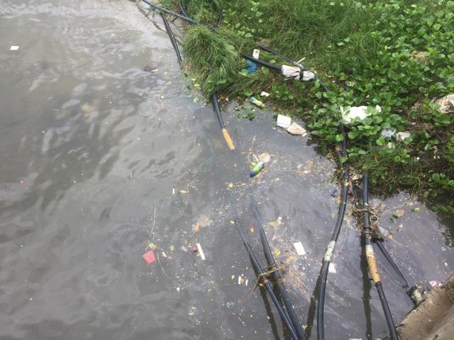 Nước thải đen ngòm lại tràn ra biển Đà Nẵng sau trận mưa lớn - 2