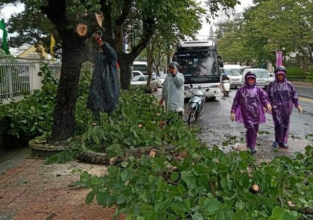 Mưa lớn khiến nhiều cây xanh bị quật đổ, 20 nhà dân bị tốc mái - 1