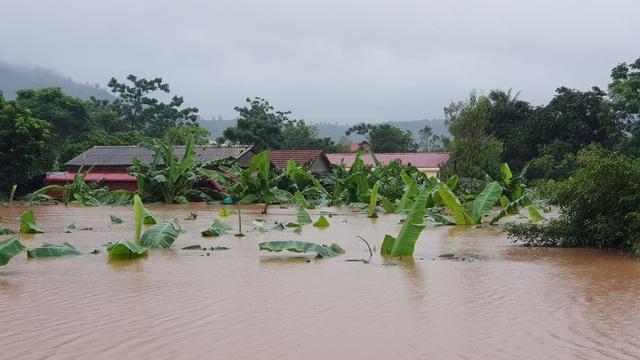 Miền Trung mênh mông nước lũ, hàng trăm ngôi nhà ngập đến tận nóc - 7