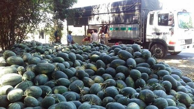 Trung Quốc làm khó, hàng loạt trái cây Việt mất giá nặng nề - 1
