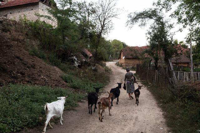 Kho báu khổng lồ chôn sâu dưới ngôi làng nghèo - 1