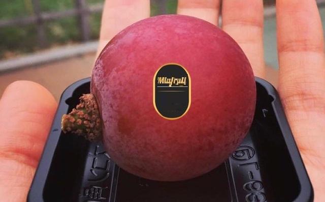 Nho đắt nhất thế giới 11 triệu/chùm, nhà giàu Việt mua lẻ 1 quả ăn thử - 1