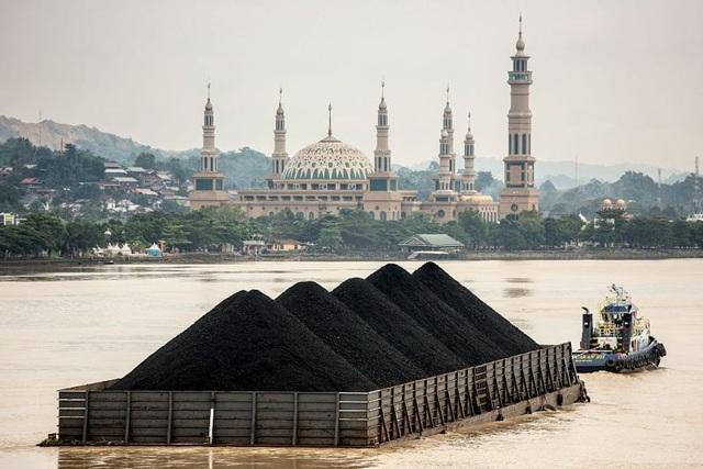 Kế hoạch 33 tỷ USD biến vùng đất ngủ yên thành thủ đô mới của Indonesia - 1