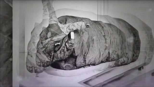 Khám phá thế giới của người chết, phát hiện hàng triệu xác ướp động vật - 3