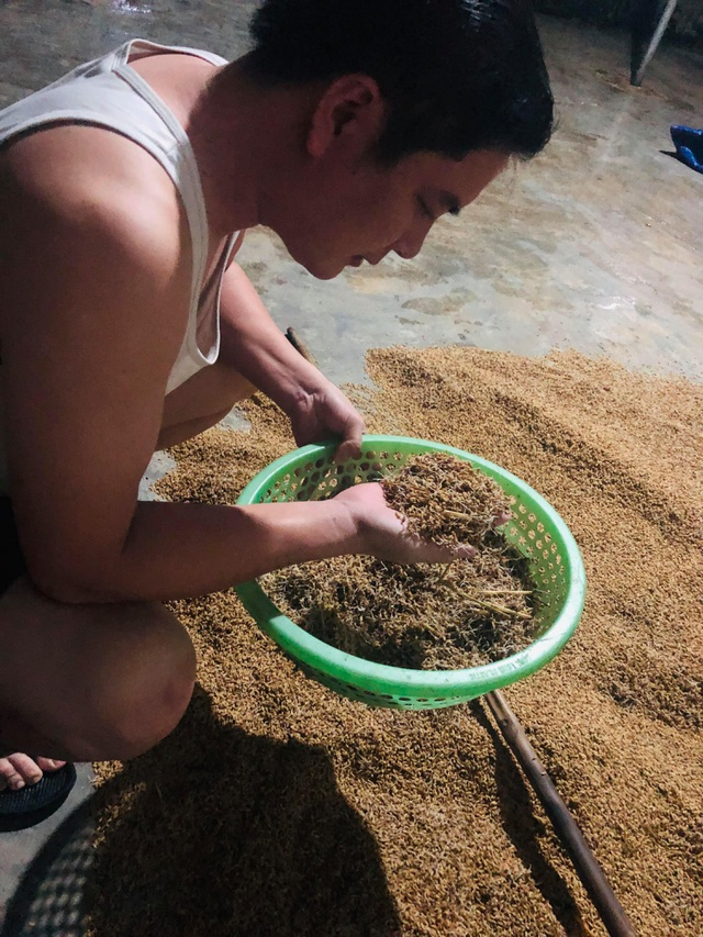 Người dân biến bồn trộn bê tông thành... máy sấy lúa - 4