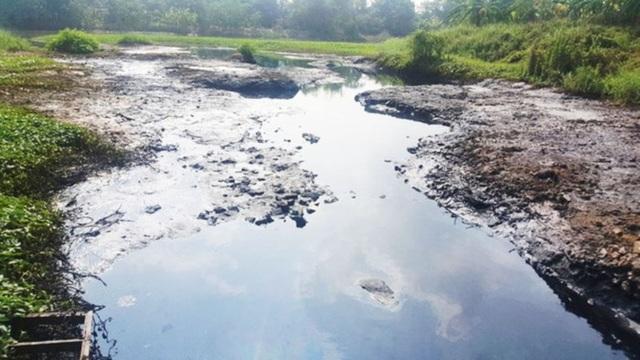 Đề xuất lập tiểu ban cứu sông Bắc Hưng Hải - 2