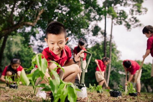 VAS và dự án môi trường biến trường học trở thành một Cộng đồng Xanh - 3