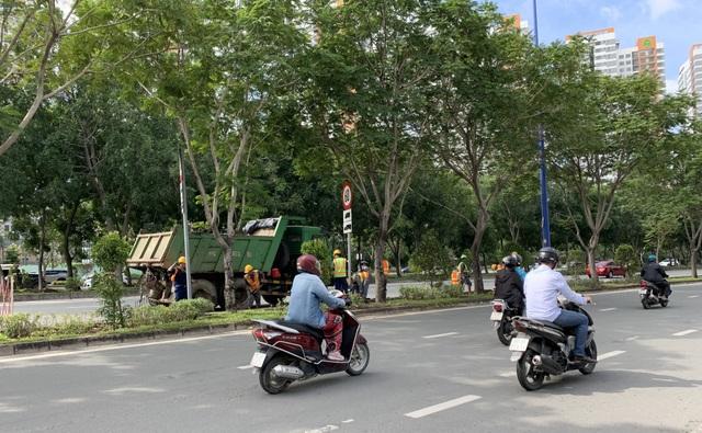 """""""Choáng váng"""" vì mùi hôi thối trên đại lộ Mai Chí Thọ, nghi do... phân bò - 3"""
