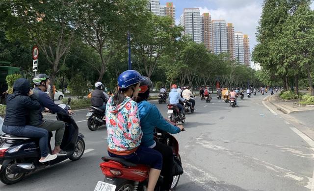 """""""Choáng váng"""" vì mùi hôi thối trên đại lộ Mai Chí Thọ, nghi do... phân bò - 1"""
