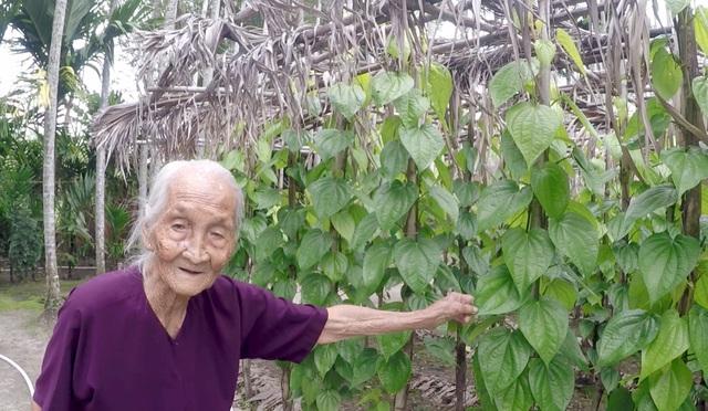 Cụ bà 106 tuổi ở Sài Gòn, mỗi ngày vẫn đi nhổ cỏ, lùa bò... - 2
