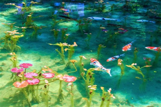 Ao nước đẹp tới mức khó tin có thật ngoài đời thực - 3