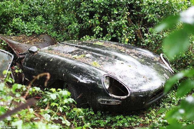 Chiếc xe bỏ hoang trong rừng gần 30 năm, giờ có giá hơn 2 tỷ đồng - 1