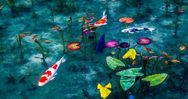 Ao nước đẹp tới mức khó tin có thật ngoài đời thực - 2