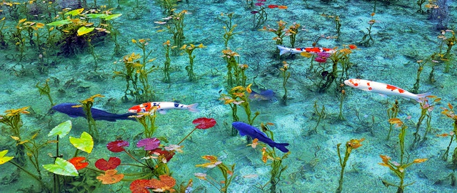 Ao nước đẹp tới mức khó tin có thật ngoài đời thực - 5