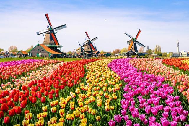 Châu Âu tuyệt đẹp qua 20 bức ảnh đầy màu sắc - 15