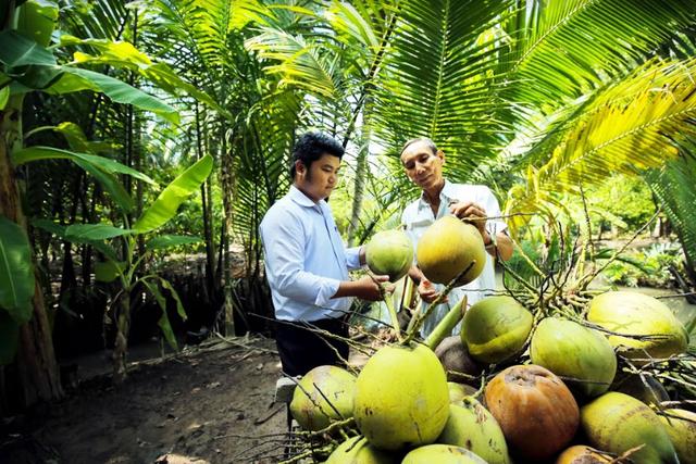 Cocoxim - câu chuyện về nỗ lực vươn ra thế giới của nước dừa Bến Tre - 2