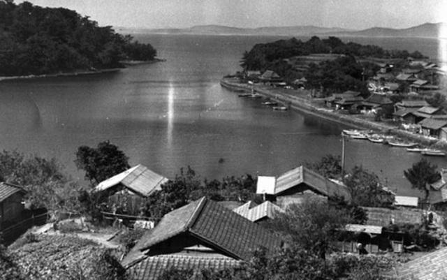 Ký ức chết chóc do thủy ngân ở Nhật Bản và bài học cho Việt Nam - 1