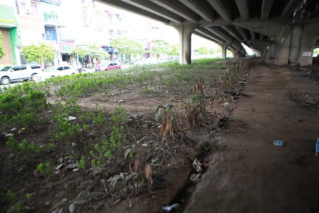 Hà Nội: Dải phân cách dưới đường trên cao nhếch nhác, đầy rác thải - 4