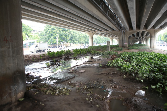 Hà Nội: Dải phân cách dưới đường trên cao nhếch nhác, đầy rác thải - 11