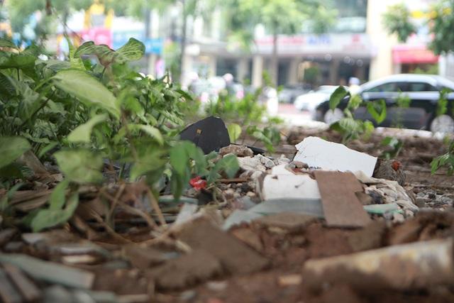 Hà Nội: Dải phân cách dưới đường trên cao nhếch nhác, đầy rác thải - 6