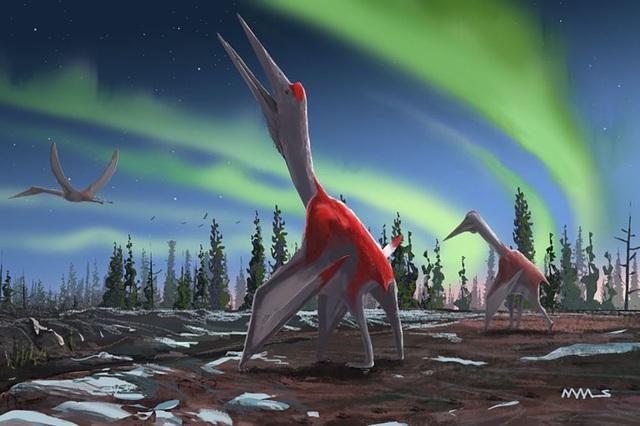 Phát hiện hoá thạch loài động vật biết bay lớn nhất từng sống trên Trái Đất - 1