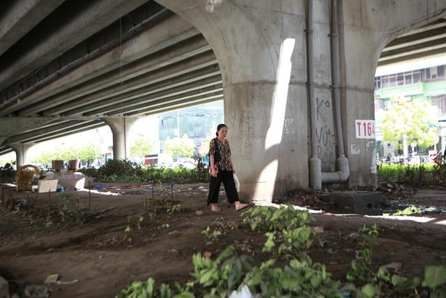 Hà Nội: Dải phân cách dưới đường trên cao nhếch nhác, đầy rác thải - 9