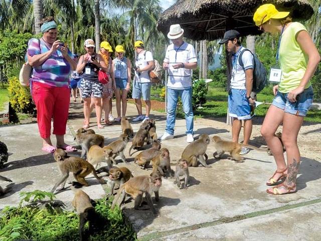 Đảo khỉ độc đáo ở Nha Trang lên báo nước ngoài - 1