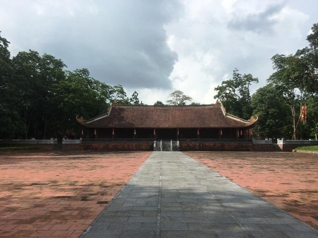 """Kỳ bí câu chuyện cây lim cổ thụ 600 năm tuổi """"hiến thân"""" tại Lam Kinh - 2"""