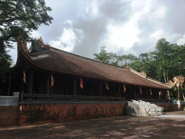 """Kỳ bí câu chuyện cây lim cổ thụ 600 năm tuổi """"hiến thân"""" tại Lam Kinh - 3"""